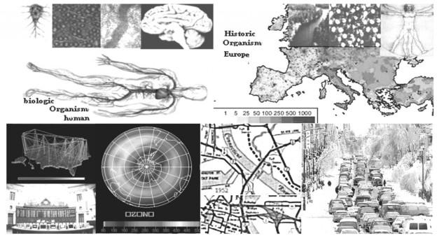 20-HISTORIC-ORGANISM-1024x563