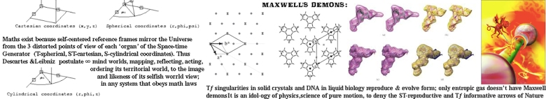 MAXWELL DEMONS