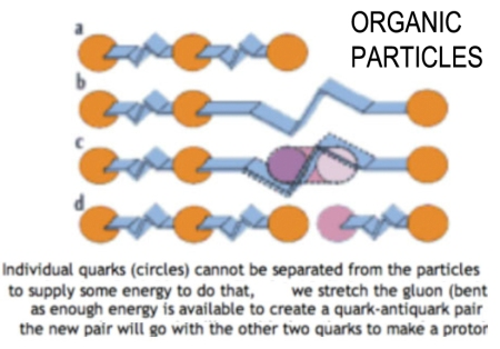 ORGANIC PARTICLES